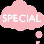 Bestickte Windel Special